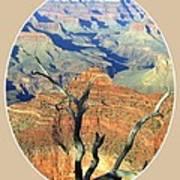 Grand Canyon 77 Art Print