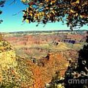 Grand Canyon Framed By Nature Art Print