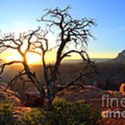 Grand Canyon Gathering The Light Art Print
