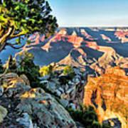 Grand Canyon Ledge Art Print