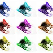 Grand Kitty Cuteness 3 Pop Art 9 Art Print
