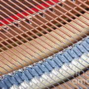 Grand Piano Strings Art Print