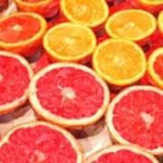 Grapefruit And Oranges Art Print
