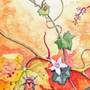Grapevine Beetle Art Print