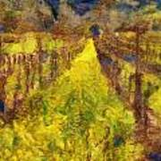 Grapevines And Mustard Print by Alberta Brown Buller