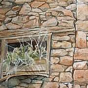 Grass In The Window Art Print