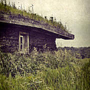 Grass Roof On Cottage Art Print