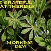 Grateful Dew Art Print