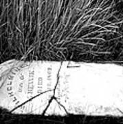 Grave Western Nevada  Art Print
