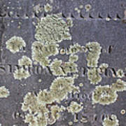 Gravestone With Lichen Art Print
