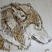 Gray Wolf Pyrographic Wood Burn Original 5.75 X 5.75 Inch Art Panel Art Print