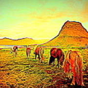 Happy To Be Grazing Again Art Print
