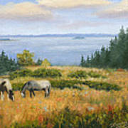 Grazing With A View Art Print