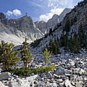 Great Basin National Park Art Print