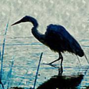 Great Blue Heron Fishing In The Low Lake Waters Art Print