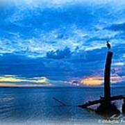 Great Blue Heron Sunrise Art Print