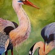 Great Blue Herons Art Print