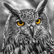Great Horned Owl V9 Art Print