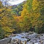 Great Smoky Mountains Creek 3 Art Print