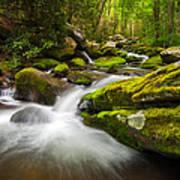 Great Smoky Mountains Gatlinburg Tn Roaring Fork - Gift Of Life Art Print