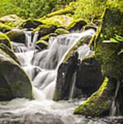 Great Smoky Mountains Tn Roaring Fork Motor Nature Trail Waterfall Art Print