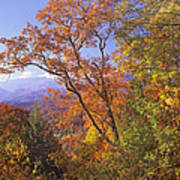 Great Smoky Mts From Blue Ridge Pkwy Art Print