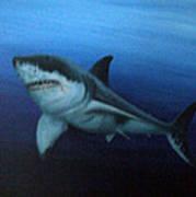 Great White Shark Art Print