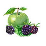 Green Apple With Blackberries Art Print