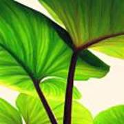 Green Canopy Pastel Art Print