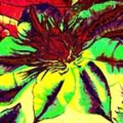 Green Clematis Flower Art Print