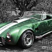 Green Cobra Art Print