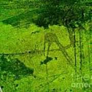 Green Color Sigh Art Print