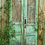 Green Cottage Doors Art Print