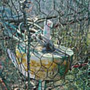 Green Crabbing Basket Art Print