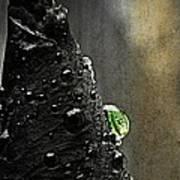 Green Droplet  Art Print
