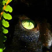 Green Eyed Black Cat Art Print