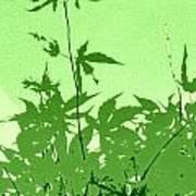Green Green Haiku Art Print