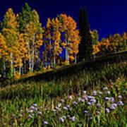 Green Hills Of Earth Art Print