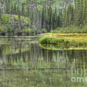 Green Lake Art Print