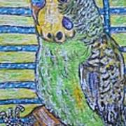 Green Parakeet Art Print