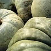 Green Pumpkins Art Print
