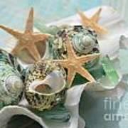 Green Shells And Sea Glass Art Print
