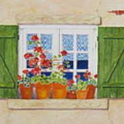 Green Shutters With Red Flowers Art Print