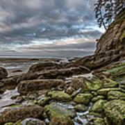 Green Stone Shore Art Print
