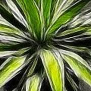 Green Tidings Of Joy Art Print