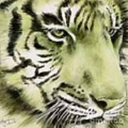 Green Tiger Art Print by Summer Celeste