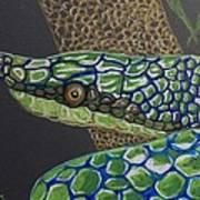 Green Tree Snake Art Print