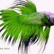 Green Tropical Fish Art Print