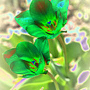 Green Tulips Art Print