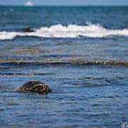 Green Turtle Surf Art Print